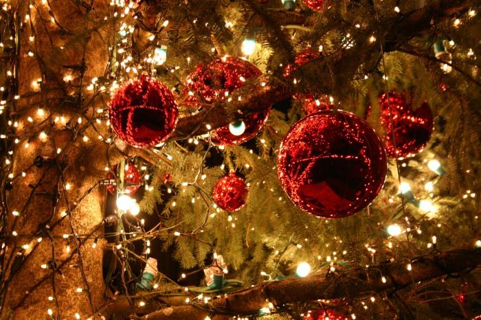 Photo from Vilnius.com.